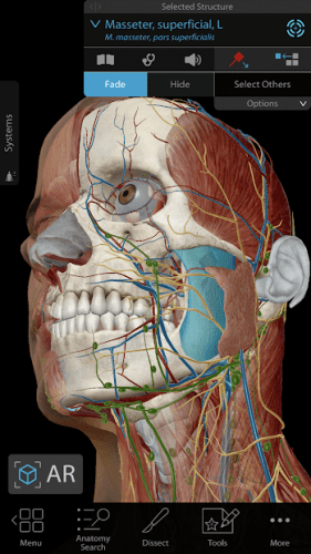 Human Anatomy Atlas 2020: Complete 3D Human Body 0