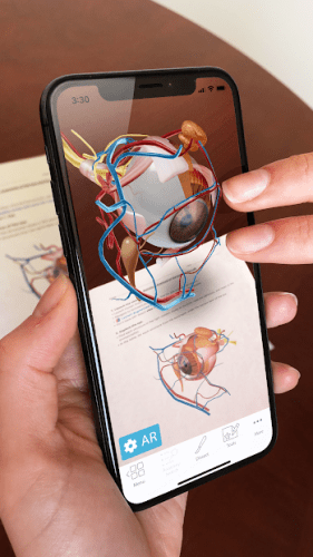 Human Anatomy Atlas 2020: Complete 3D Human Body 4